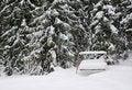 Free Rural Winter Landscape Stock Images - 17838404