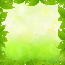 Free Spring Leaves. Vector Stock Photos - 17832193