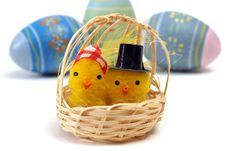 Free Mom And Pop Chicks Stock Image - 17833031