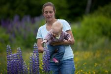 Free Young Mother & Daughter In Lupine Flowers Royalty Free Stock Photos - 17834158