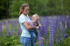 Free Mother & Daughter In Field Of Lupine Flowers Stock Photo - 17834160