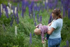 Free Mother & Daughter In Field Of Lupine Flowers Stock Photography - 17834172