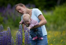Free Mother & Daughter In Field Of Lupine Flowers Royalty Free Stock Photos - 17834178