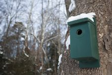 Free Birdhouse On Tree Stock Photography - 17839022