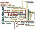 Free Dog Breed Word Cloud Stock Photos - 17846613