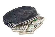 Free Purse With Money Royalty Free Stock Photos - 17840868