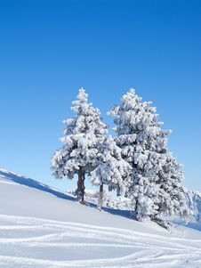 Free Winter In The Alps Stock Image - 17842091