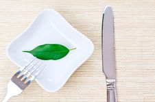 Free Green Leaf On A Plate As Vegetarian Diet Royalty Free Stock Photography - 17845047