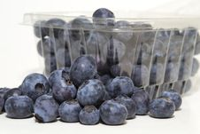 Free Blueberries Royalty Free Stock Photography - 17848147