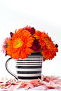 Free Flowers In A Vase. Royalty Free Stock Photo - 17857075