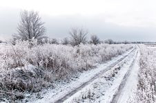 Free Winter Road Royalty Free Stock Image - 17852726