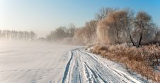 Free Foggy Frosty Morning Royalty Free Stock Images - 17853129