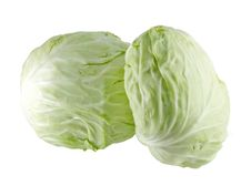 Free Cabbage Stock Photography - 17853982