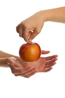 Free Apple In Hands Stock Image - 17855291