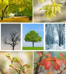Free Season Landscape Stock Image - 17855471