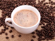 Free Coffee Stock Photos - 17855663