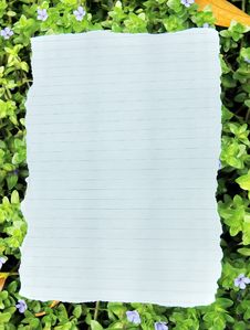 Free Blank Note Paper Royalty Free Stock Photos - 17856478
