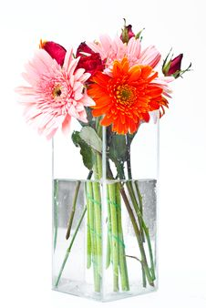Free Flowers In A Vase. Royalty Free Stock Photography - 17856917