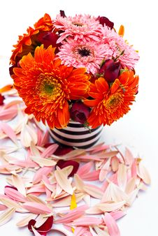 Free Flowers In A Vase. Stock Image - 17857191