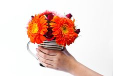 Free Flowers In A Vase. Stock Photography - 17857422