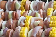 Free Chicken And Vegetable Kabobs Stock Photo - 17857720