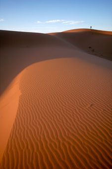 Free Alone In The Desert Royalty Free Stock Photo - 17858115