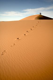 Free Footsteps In The Desert Stock Photography - 17858152