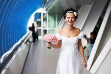 Free Joyful Bride Royalty Free Stock Photo - 17858745