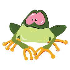 Free Cartoon Frog Royalty Free Stock Photography - 17859057
