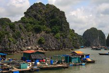 Free Halong Bay Fishing Village Royalty Free Stock Photo - 17859535