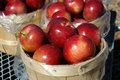 Free Basket Of Apples Stock Photography - 17860682