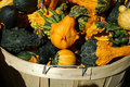Free Fall Basket Of Gourds Royalty Free Stock Photography - 17860697