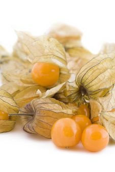 Free Physalis Fruits On White Royalty Free Stock Photography - 17860507