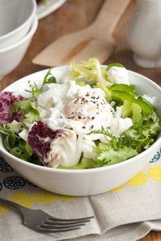 Free Leaf Salad Stock Images - 17861934