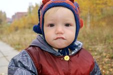 Free The Boy Walks In The Autumn In Park Stock Images - 17867964