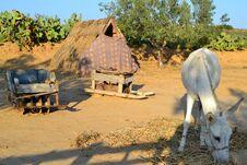 Free The Nonsense Of The Traditional Berber Lifestyle, Tunisia Stock Photo - 178645530