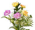 Free Bunch Of Carnations Royalty Free Stock Photography - 17876527
