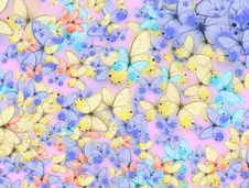 Free Butterfly Stock Image - 17870071
