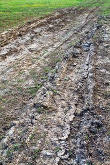 Tire Track Stock Image