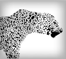Leopard, Abstract Background Royalty Free Stock Photography