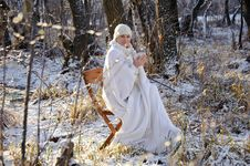 Woman In The Winter Forest Royalty Free Stock Image