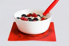 Bowl With Berries Stock Photography