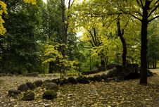 Free Autumn Park. Royalty Free Stock Photo - 17879045
