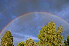 Free Spring Rainbow Over Green Trees Stock Photos - 17879453