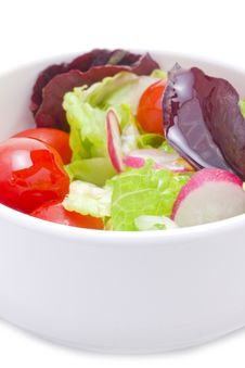 Free Fresh Mix Of Spring Salad Stock Images - 17880204