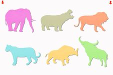 Free Animals Colored Notes Stock Photo - 17881420
