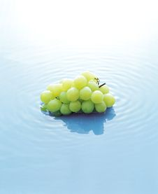 Free Grapes In A Pool Of Water Stock Photos - 17881623