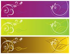 Free Flower Color Banner Illustration Stock Images - 17882674