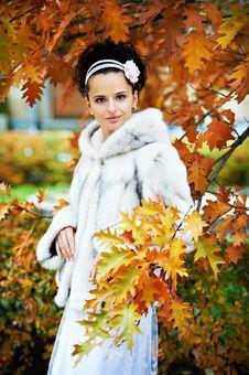 Free Elegant Bride In Yellow Autumn Park Royalty Free Stock Photos - 17884138