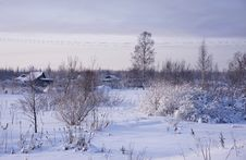 Free Winter Rural Landscape Royalty Free Stock Photo - 17885315